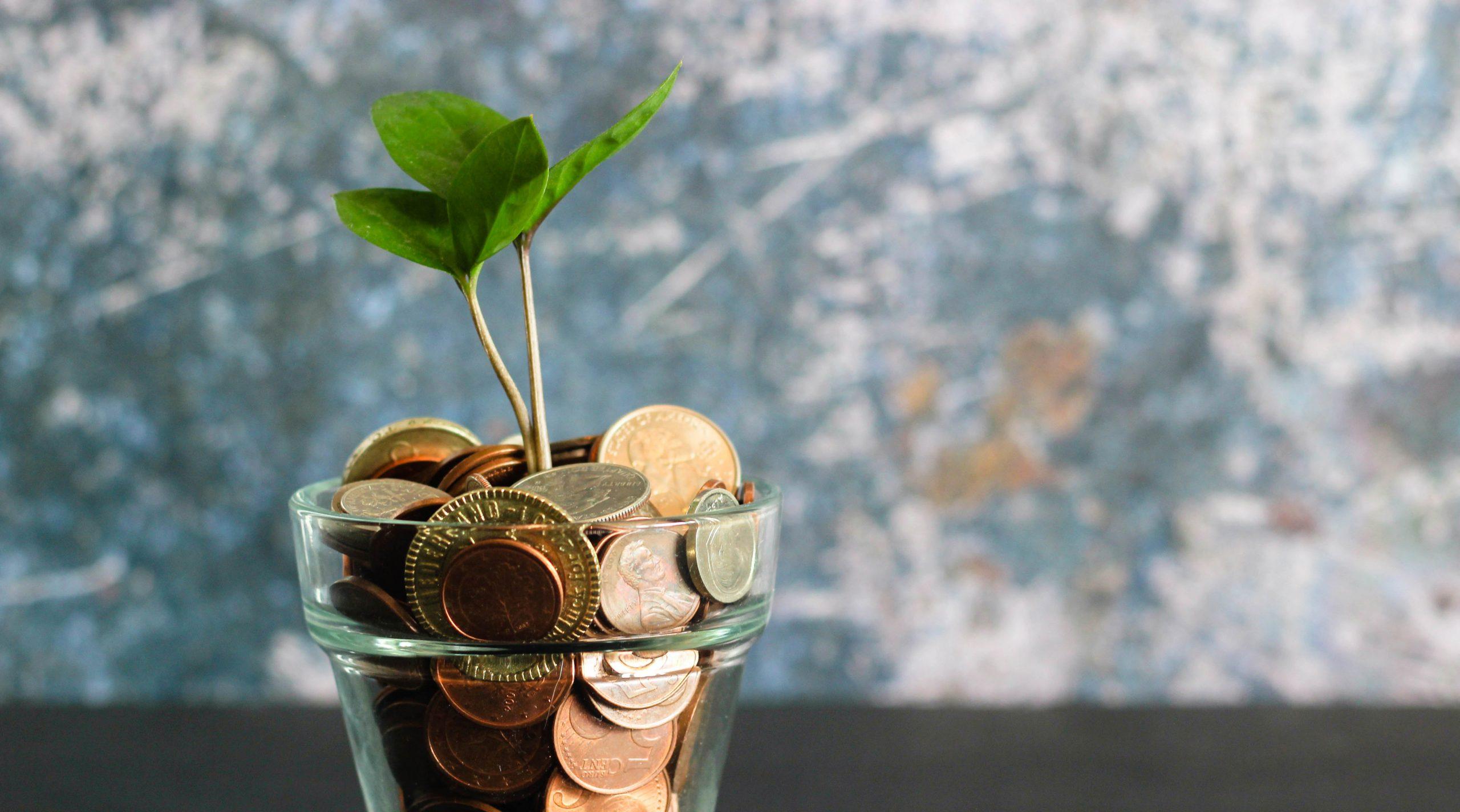 Beleggen in dividendaandelen: de voor- en nadelen